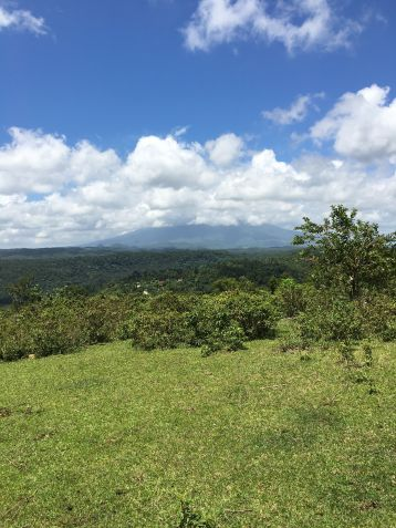 Farm Lot for Sale, 240000sqm Lot in Sampaloc, Engr. Ednel Peter A. Madriaga - 0