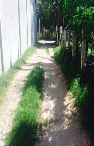 ID 14454 - Lot For Sale In Dumaguete City - 2