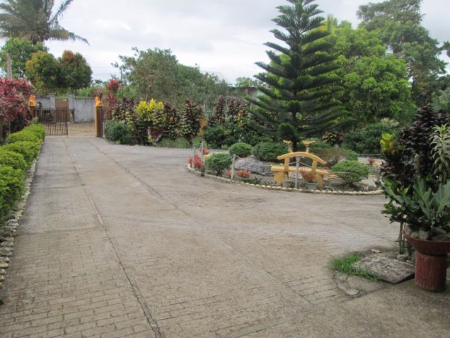 5000 sqm farm lot with rest house near Tagaytay at P15M - 2