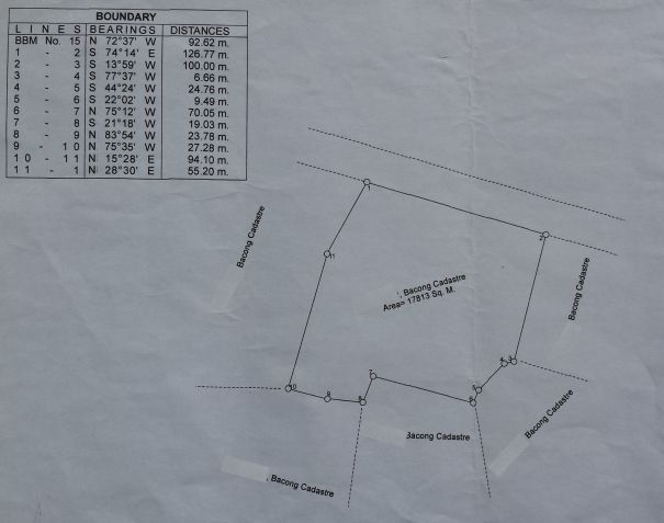 Lot for Sale in Bacong, Negros Oriental  1.7 Hectares - 0
