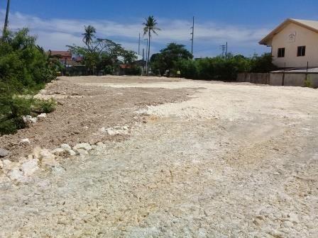 Lot for Lease or Rent in Lapu-Lapu City, Mactan, Cebu - 2