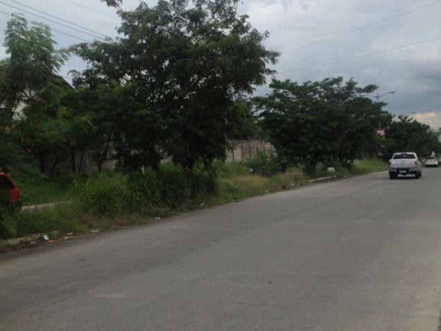 Lot for Sale, 17.7051 Hectares in Metro Manila, Daang Hari, Las Pinas, Maria Teresita Estrada - 6