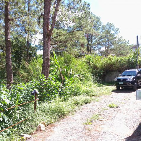 Residential Lots (3 adjacent lots) 993 Sq.m. Lot at Pico La Trinidad Benguet by Summer Capital Realty & Mktg. Services - 1