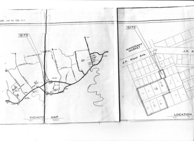 Lot for Sale, 1.1 Hectares in Tagaytay, Mahogany Ave, RRLegarda Realty - 2