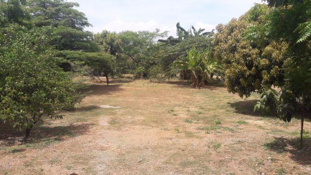Commercial Lot for Sale, Amvel Business Park, Dr. A. Santos, Sucat, Paranaque - 1
