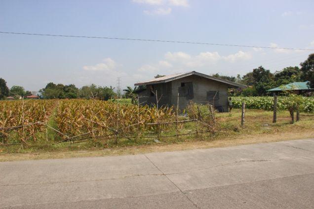 1,224 Sqm. Farm Lot for Sale, Balaoan, La Union, Ilocos - 1