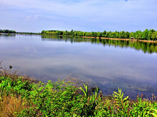 For Sale: 139 Hectares Titled Fish Farm, Payao, Zamboanga Sibugay Province - 1