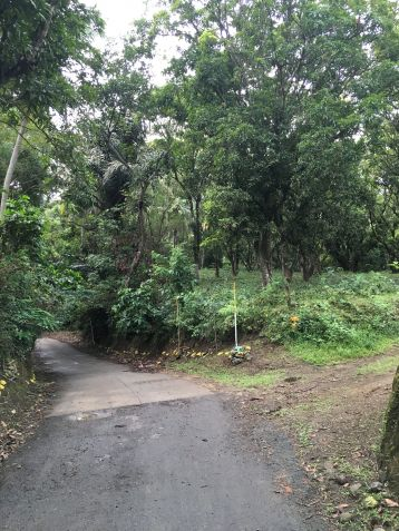 Farm Lot for Sale, 24416 sqm in Batangas City, Engr. Ednel Peter A. Madriaga - 1
