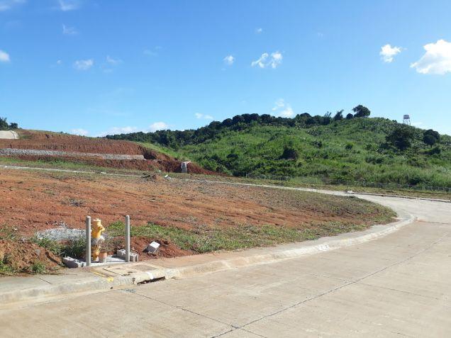 216 sqm Residential Lot for Sale in Amarilyo Crest Havila Taytay Rizal - 3