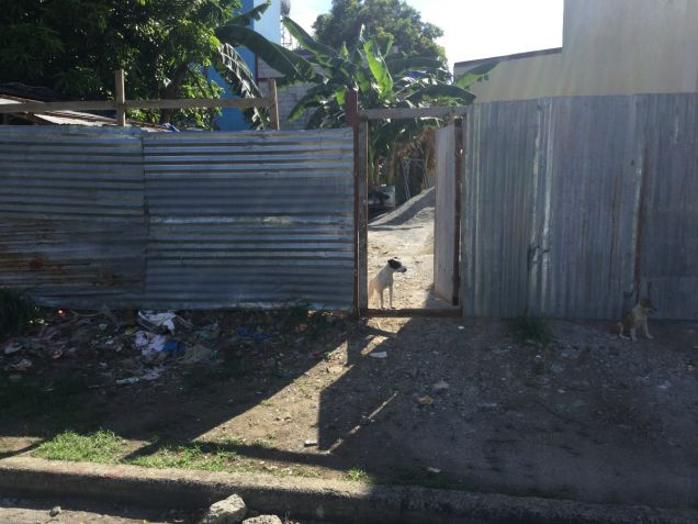 LOT For Sale in South Fairview Quezon City,Philhomes Realty,Jenalyn M.Obra - 4