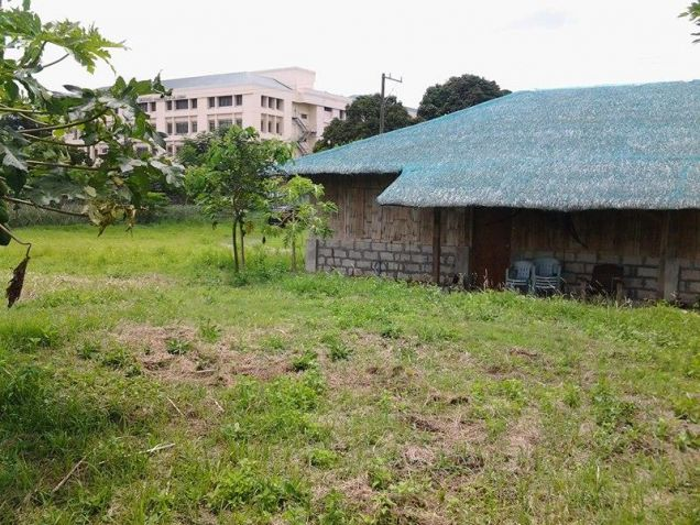 Farm lot with improvement in near Tagaytay city - 9