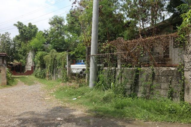 Commercial Lot For Sale @ Damosa - 4