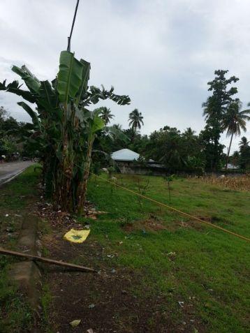 Farm Lot for Sale, 4188sqm Lot in Balingasag, Brgy. Cogon, Municipality of Balingasag, Cedric Pelaez Arce - 5
