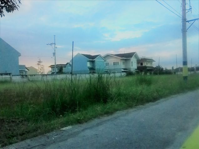 Commercial lot for lease along Molino Boulevard Bacoor Cavite - 3