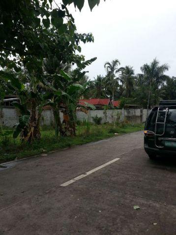 Farm Lot for Sale, 4188sqm Lot in Balingasag, Brgy. Cogon, Municipality of Balingasag, Cedric Pelaez Arce - 1