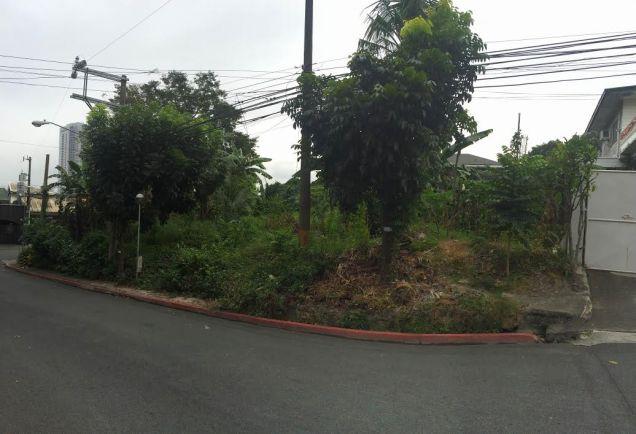 White Plains Corner Lot for Sale in Quezon City - 1