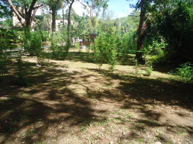Lot for Sale in Baguio City - 4