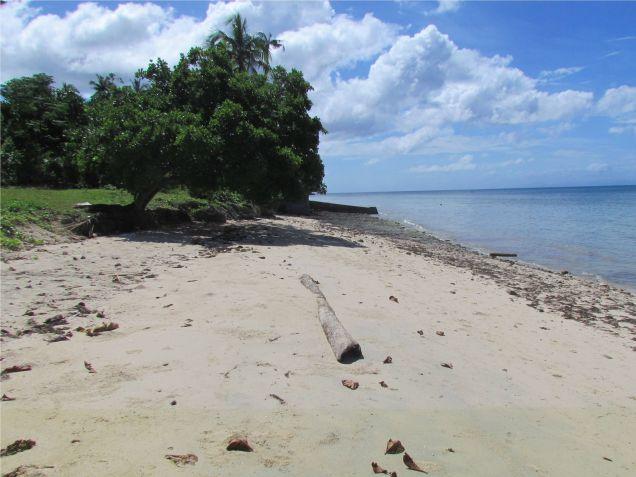 For sale 4,659 sq.m. Beach Lot in Union, San Francisco, Camotes Island, Cebu - 0