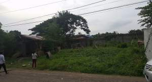 Poultry Farm for Sale in Davao City