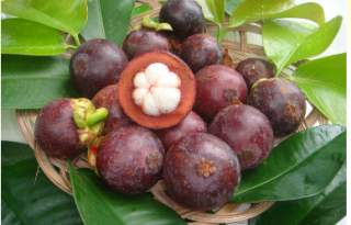 JA - For Sale: Farm Land in Brgy  Balian, Pangil